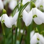 Mit tegyünk a tavaszi fáradtság ellen?